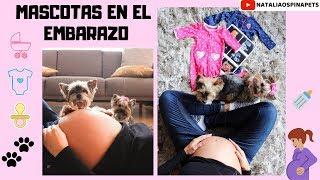 ¿Puedo tener Mascotas durante el embarazo? - Tips by Natalia Ospina | Kholo.pk