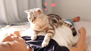 애교로 주인 잠 깨워주는 고양이 -심쿵- | Kholo.pk