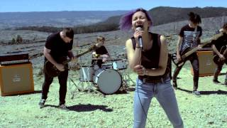 Flight - The Sweet Apes (Official Music Video)