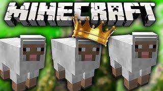 Minecraft SHEEP QUEST - CRAZY SHEEP MINI-GAME w/Lachlan & Friends