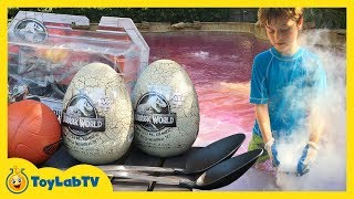 Giant T-Rex Dinosaur vs Shark! The Pool Is Lava Game with Jurassic World Surprise Toys & Dinosaurs