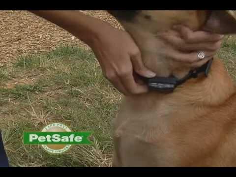 Petsafe Elite Big Dog Bark Control Video