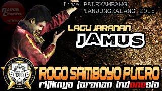 Solah Rijik Sam AMBOEN - JAMUS Cover Voc IKA Lovers ROGO SAMBOYO PUTRO Live TANJUNGKALANG 2018