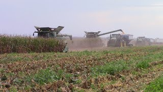 2,800 Acre Corn Field Question and Answer Video