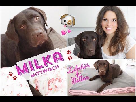 ♡ Milka Mittwoch ♡ Hunde Zubehör | Haustier Tag | brauner Labrador | Welpe Bett Körbchen furminator