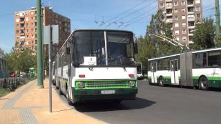 preview picture of video 'Szeged Bus & Trolleybus [1080p]'