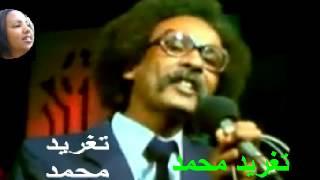 تحميل اغاني مصطفى سيد احمد - مريم الاخرى _ تغريد محمد MP3