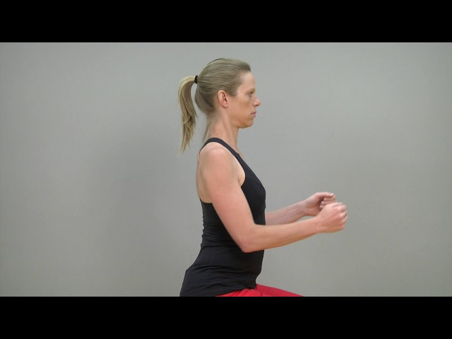 Multiple scapular motor control exercises