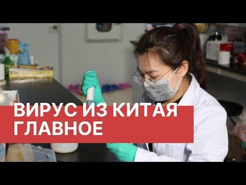 Подпишитесь на канал РБК: https://www.youtube.com/user/tvrbcnews?sub_confirmation=1 Неизвестный ранее вирус, вызывающий пневмонию,...