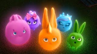 Sunny Bunnies   Glow in the Dark Bunny   SUNNY BUNNIES COMPILATION   Cartoons for Children