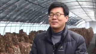 2016년 01월 29일 방송 전체 영상