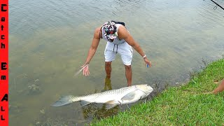 HOW we SAVED A LIFE of a MONSTER FISH!