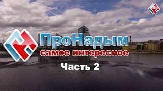 Про Мусор в Надымском Районе часть 2 (Субботник в лесу)