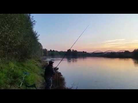 Video su pesca in Tver