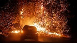Chile:Vaga de incêndios submerge Santigo numa névoa de fumo