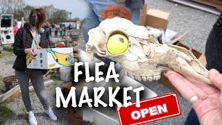 The Flea Market IS OPEN | Shopping For DEALS | Reselling