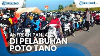 Larangan Mudik Dicabut, Antrean Kendaraan Mengular di Pelabuhan Poto Tano Sumbawa
