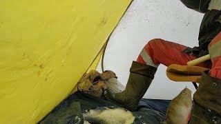 Зимняя рыбалка в башкирии на озерах