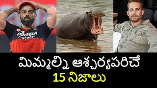 Top 15 Unknown Facts in Telugu   Interesting and Amazing Facts   Part 94   Minute Stuff