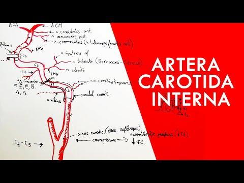 Artrita 2 grade tratamentul articulației cotului