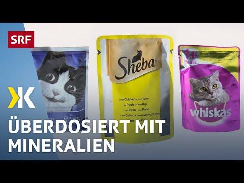 Nassfutter für Katzen im Test: Jedes zweite ist ungesund |   2017 | SRF Kassensturz