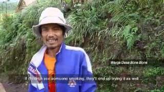 preview picture of video 'Desa Sehat Bukan Sekedar Wacana di Bone-Bone'