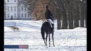 preview picture of video 'Hubertus 2012 w THK Wolbórz relacja w Teleexpresie'