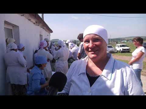 В Караидельском районе прошел конкурс профмастерства среди операторов машинного доения
