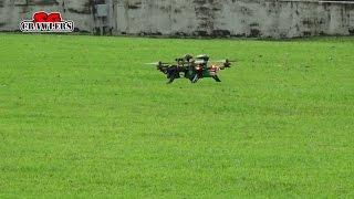 Walkera Runner 250 Advance Drone 5.8G FPV GPS System HD Camera Racing Quad RTF Bro Chai Flight Test