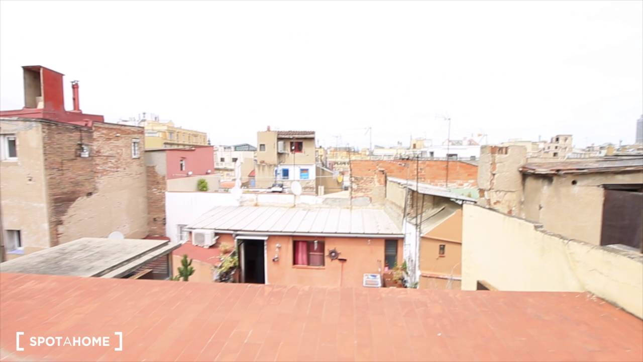 Wonderful 1-bedroom apartment with a view of El Born rooftops - bills included