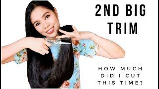 TESTING CreamSilk Hair Commercial BUN Drop TEST-DOES IT WORK