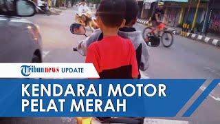 Viral! Bocah Kendarai Motor Berpelat Merah di Pekalongan, Wakil Wali Kota Minta Maaf