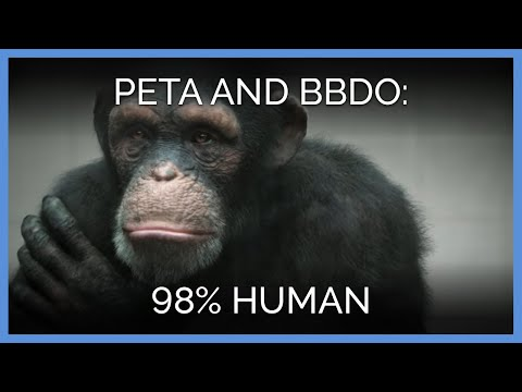 People for the Ethical Treatment of Animals (PETA) Commercial (2013) (Television Commercial)