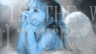 CHARLIE LANDSBOROUGH....what colour is the wind..wmv