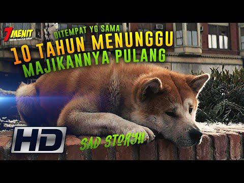 TRUE STORY!! 10 Thn PENANTIAN - Kisah ANJING Paling SETIA - Alur Cerita Hachi A Dogs Tale