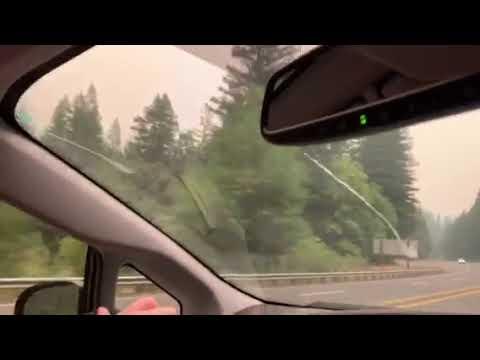 Video Of Humboldt Redwoods/Burlington, CA