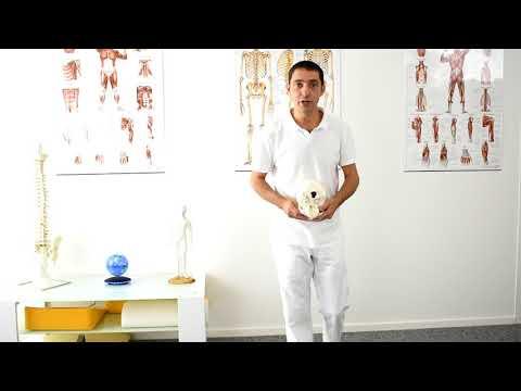 Ob es möglich ist, Massage bei einer Hernie in der Halswirbelsäule zu tun