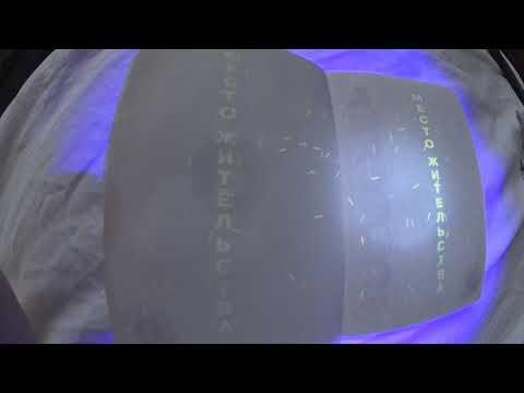 Паспорт в ультрафиолете
