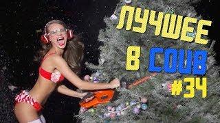 ЛУЧШИЕ ПРИКОЛЫ В COUB / ТВОЯ ЁЛКА  #34