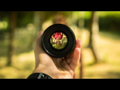 Understand Aperture, Shutter Speed and ISO in under 2 minutes