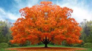 Músicas Para Tratamentos Espirituais (Sociedade Espírita Ramatis) - 1