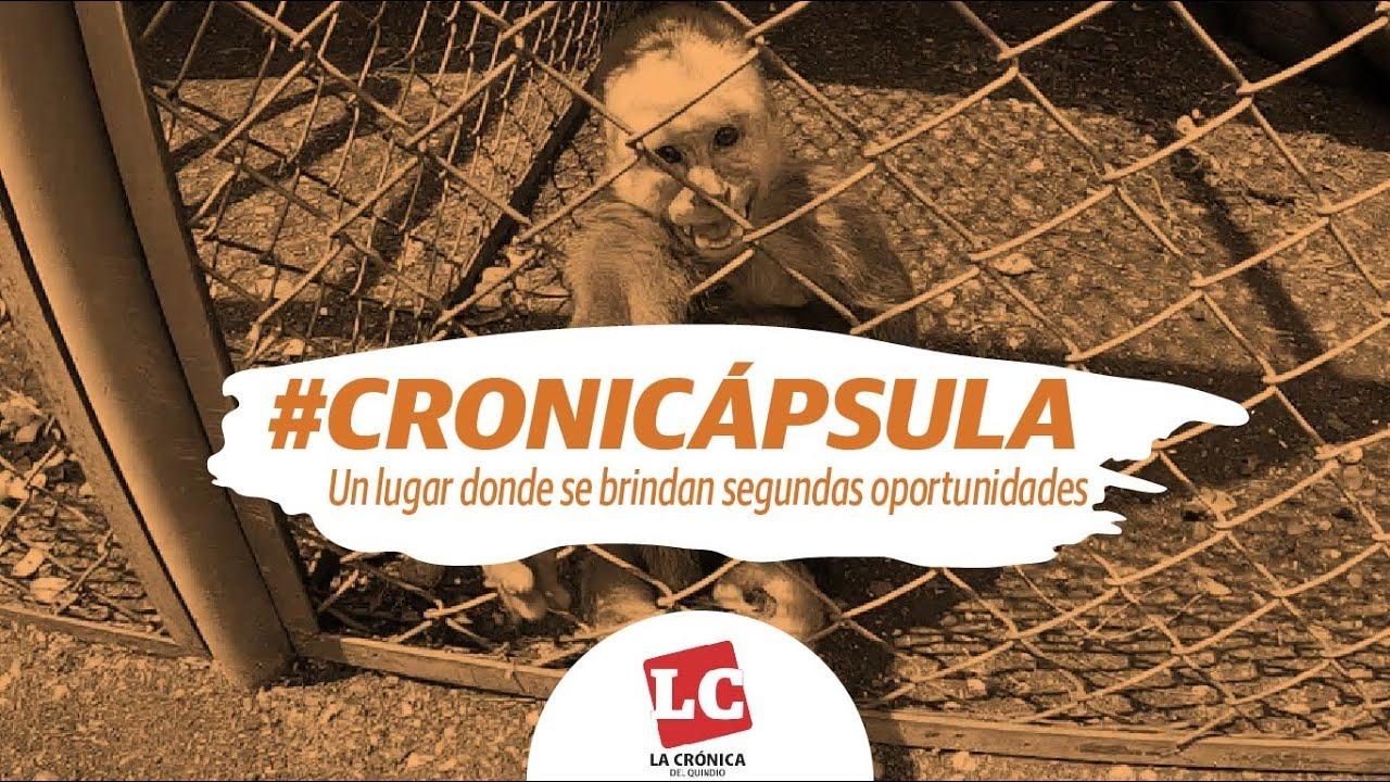#Cronicápsula | Un lugar donde se brindan segundas oportunidades