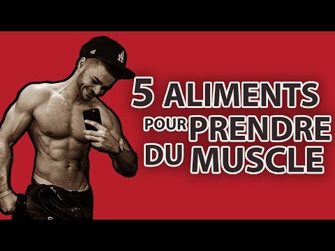 Le travail de laboratoire de la biologie 8 classes du muscle