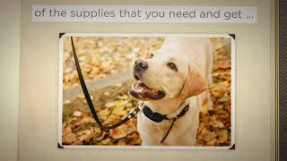 Pet Supplies  - Puss and Pooch