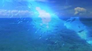 イロドリオキナワー八重山・先島の島々よりcolorfulislandsOKINAWA