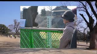 熊本城周遊観光コース60分コース