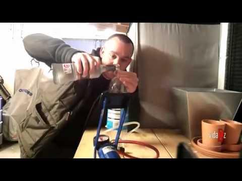 Leczenie alkoholików Biszkeku