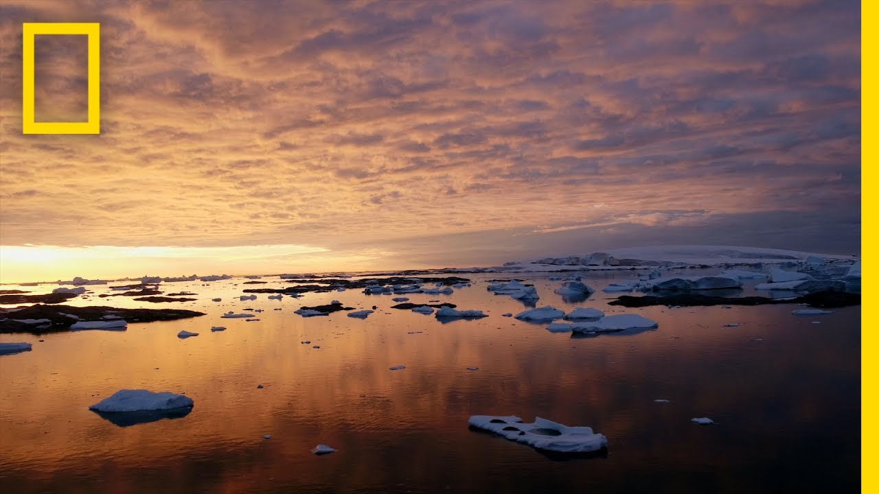 See Antarctica Like Never Before | National Geographic thumbnail