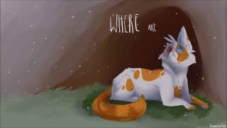 Warrior Cat PMV MAP | Faded