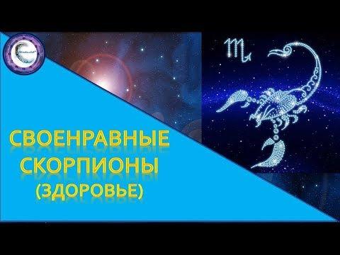 Своенравные Скорпионы Знак Зодиака Скорпион. Здоровье ребёнка Скорпиона.
